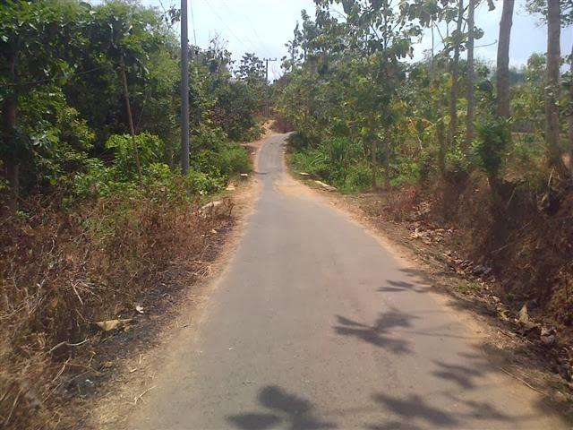Jalanan di tempat antah-berantah di Kabupaten Tuban. Sudah diaspal lho...