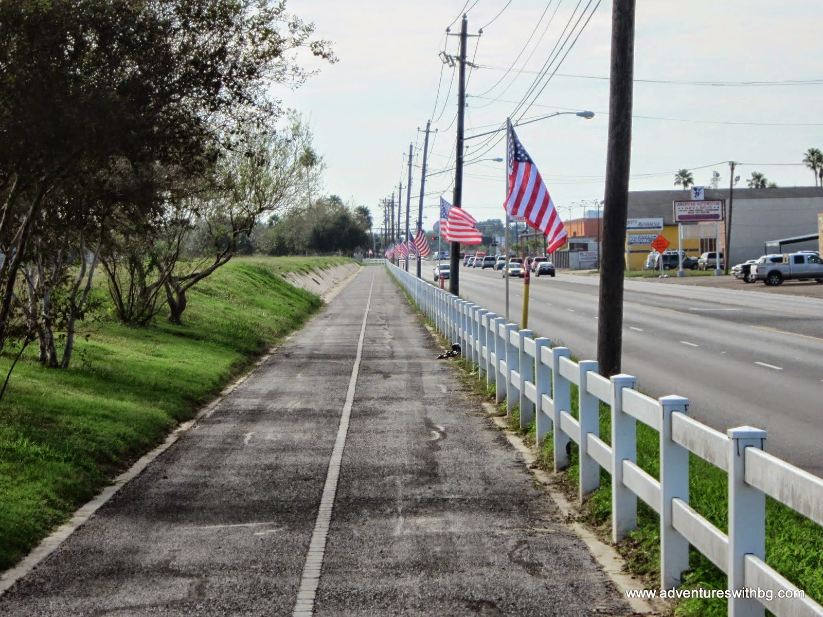 The trail lined with flags for Veteran's Day