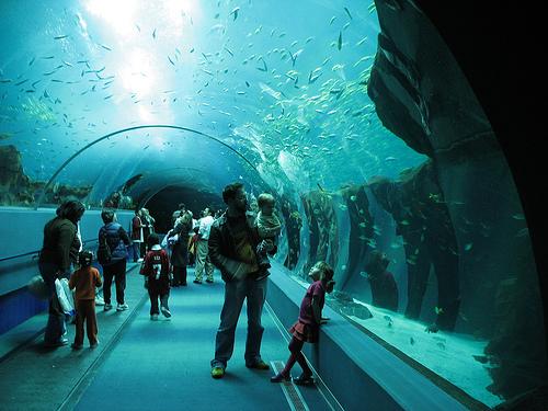 Fish tank office table - Aquariums Creative Amp Interesting Info Planet