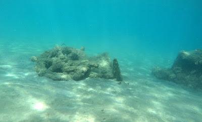 Ενάλια γεωαρχαιολογική και γεωφυσική έρευνα στη Μεσσηνία