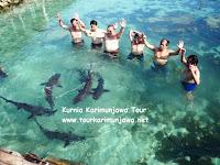 wisatawan berfoto dengan hiu di karimun jawa