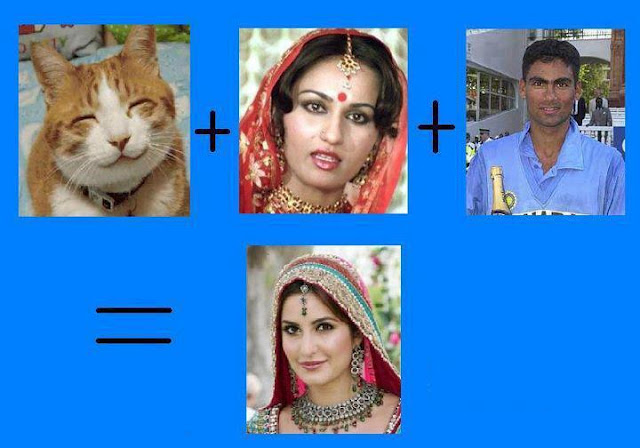 Cat + Reena + Kaif = Katrina Kaif, Funny Photos from Facebook