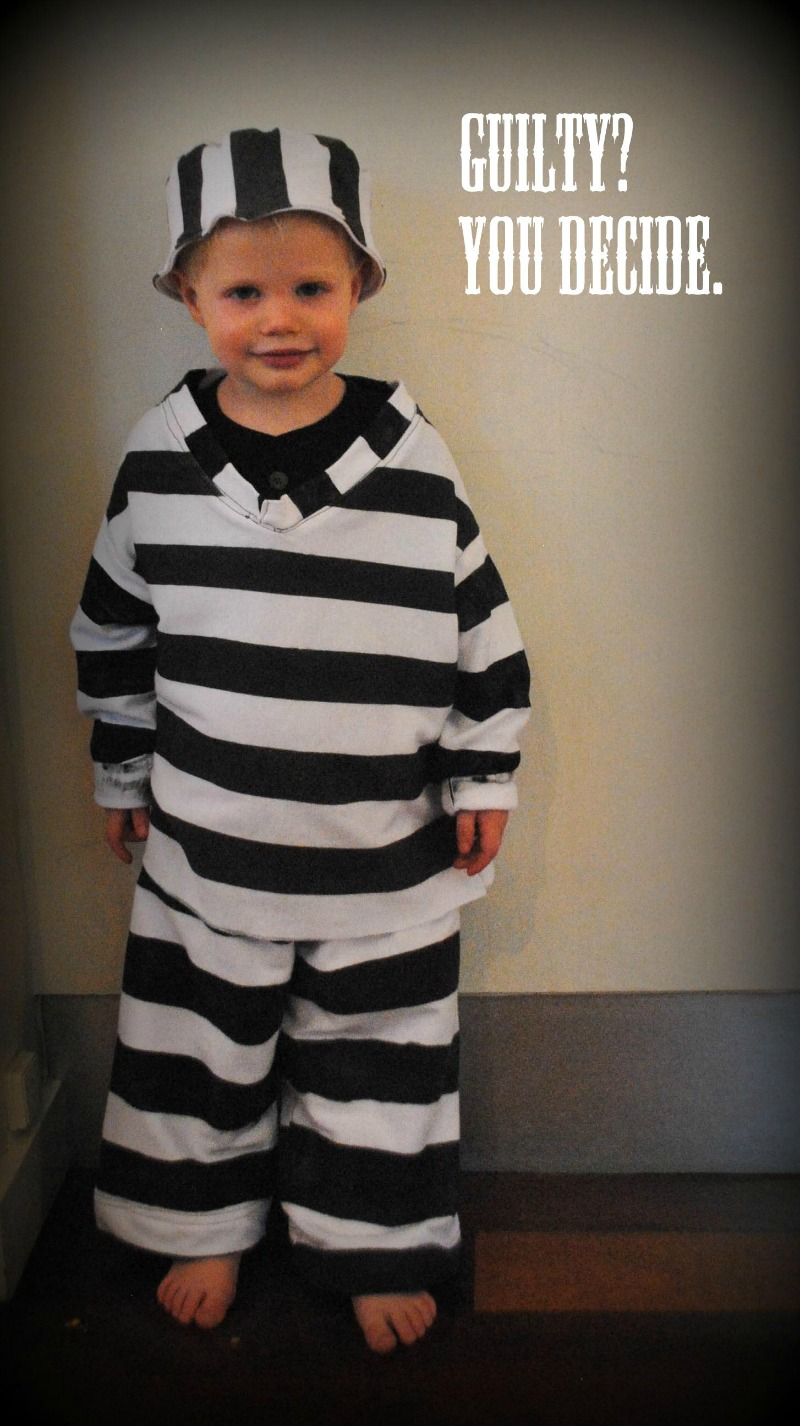 Diy jailbird costume tutorial andreas notebook diy jailbird costume solutioingenieria Images