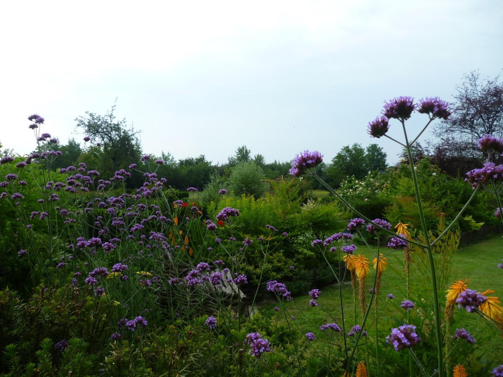 Associazione arte in orto giardino naturale birdgarden - Arte e giardino ...