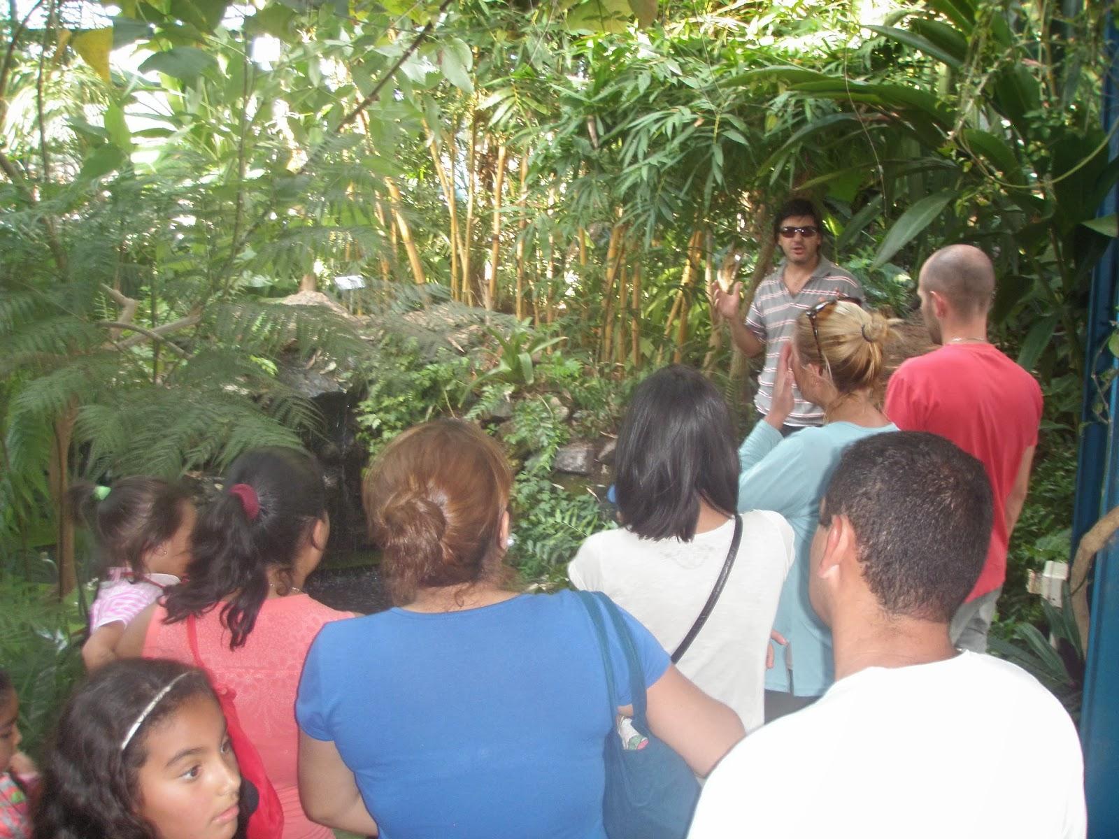 Jard n bot nico de c rdoba actividades 2013 for Actividades jardin botanico