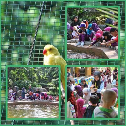 Secawan Kopi Panas: Taman burung kuala lumpur