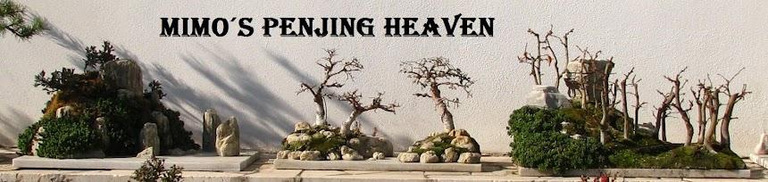 Mimo´s penjing heaven
