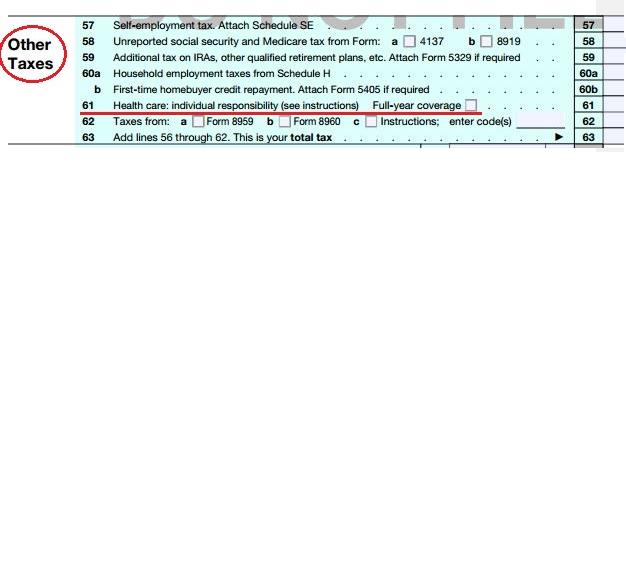 irs form 1040 line 20b instructions