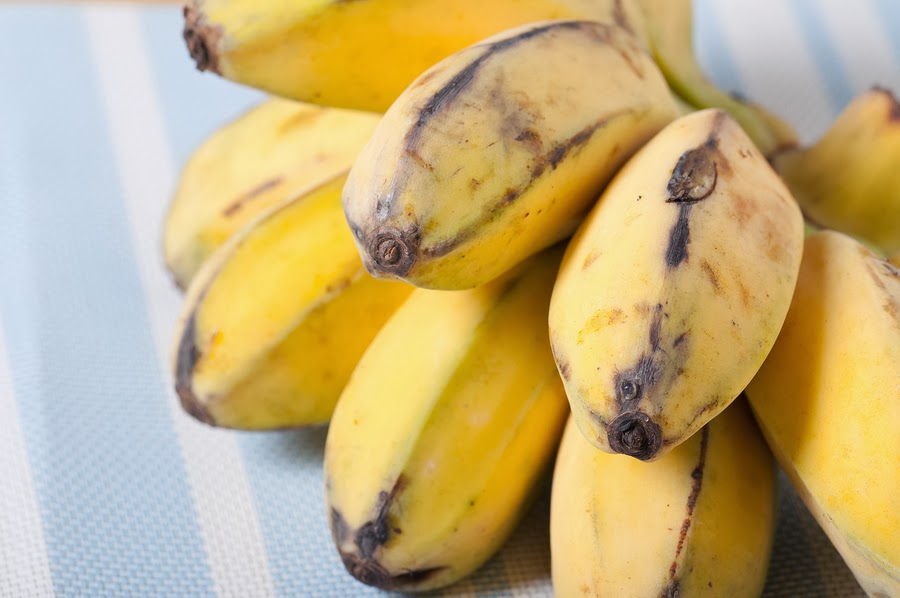 Saba Bananas