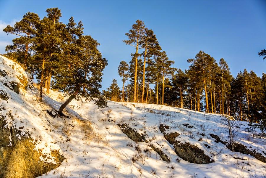 Мороз и солнце, день чудесный
