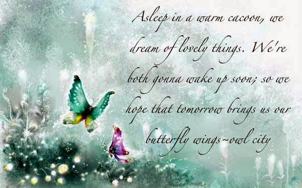 Butterfly Quotes - Asleep in a warm ca