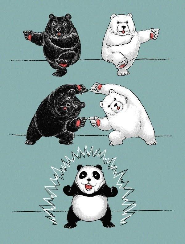 Fusion panda, funny picture, funny, panda