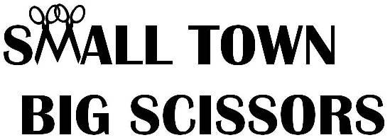 Small Town Big Scissors