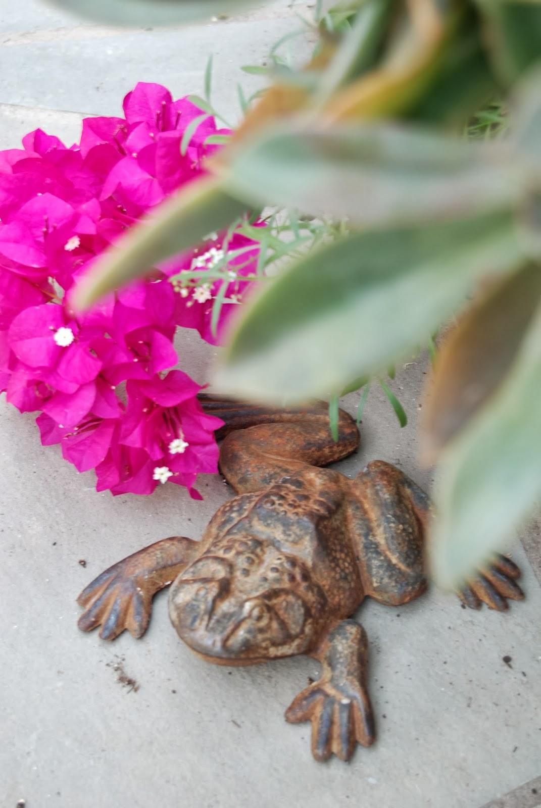 Vintage Garden Frogs 4