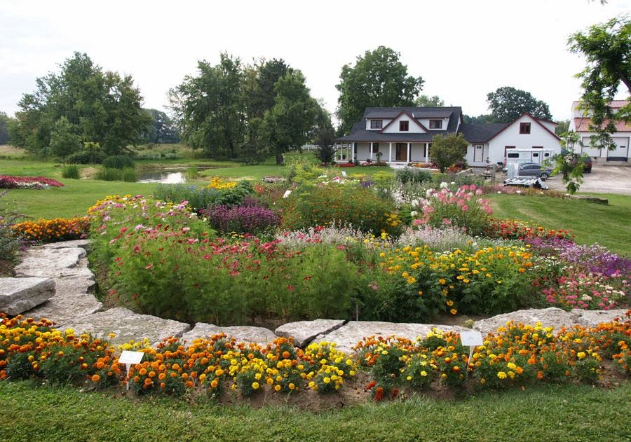 Pollinators Paradise Project: William Dam Seeds: Bee And Butterfly Trial  Garden