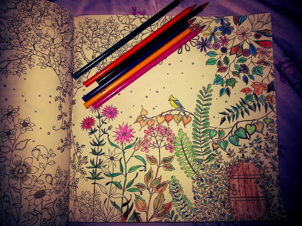 fotos jardim secreto:Eternamente princesa !: Livro: Jardim Secreto