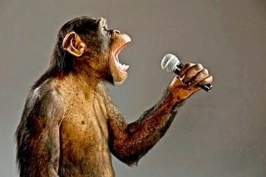 Racismo e macacos