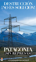 Patagonia Sin Represas! (Patagonia Free of Dams!)