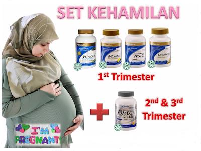 set kehamilan trimester 1, 2, 3