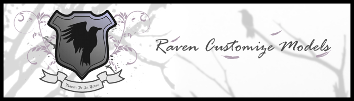 Raven Customize Models