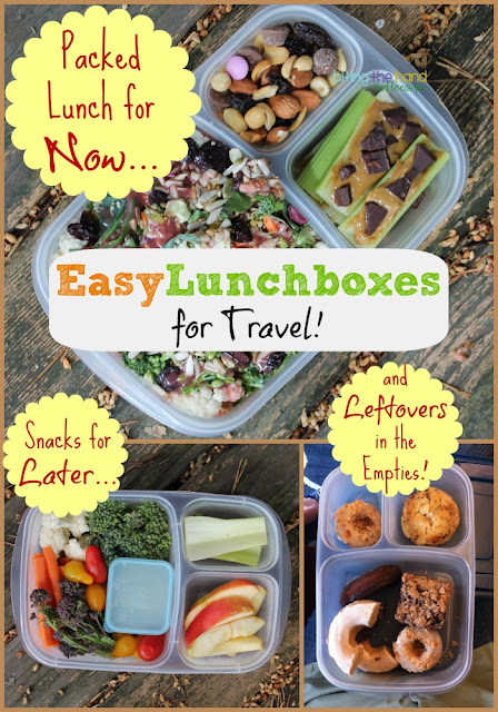 Traveling with EasyLunchboxes!