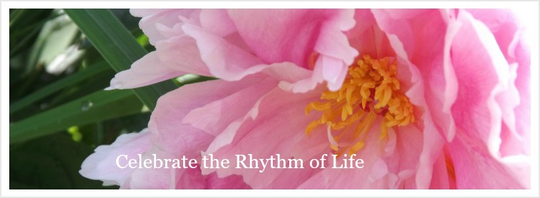 Celebrate the Rhythm of Life