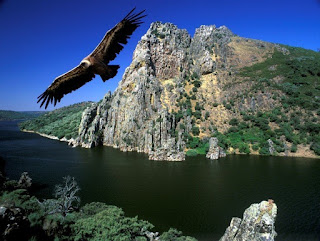 Parques Naturales de Cataluña