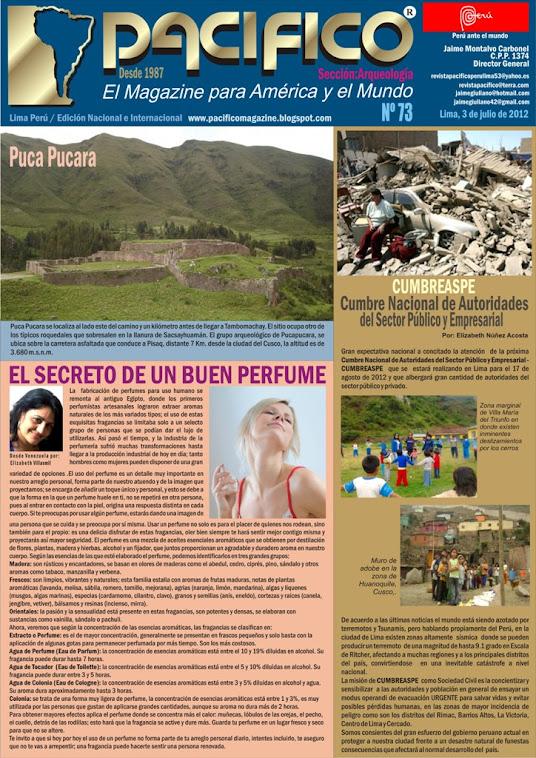 Revista Pacífico Nº 73 Arqueología