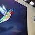 Google Update Algoritma Baru - Hummingbird