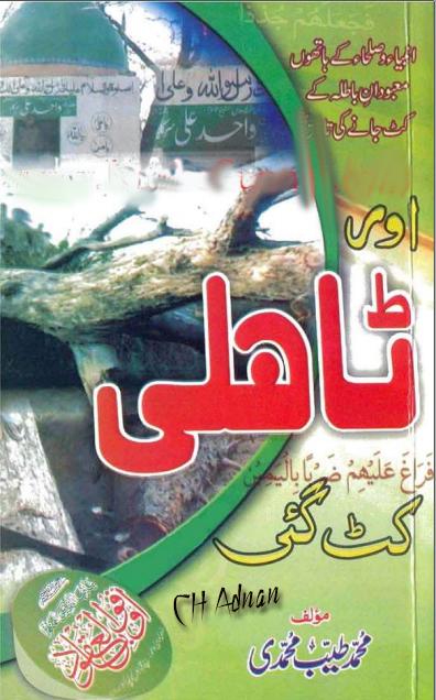 """""""Aurr Tahli katt Gai""""This Book Has Been Written by""""M.Tayyab Muhammadi"""", brelvi haqaiq, Barelviyat Haqaiq Kay Aainay Mayn,Ahle Biddat Razakhani Mazhab, Barelviat, apni Kitabon ke Ainay main,"""