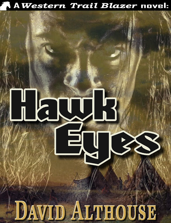 Hawk Eyes Cover Art