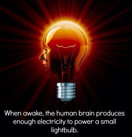 When awake the human brain produces enough electricity to ...