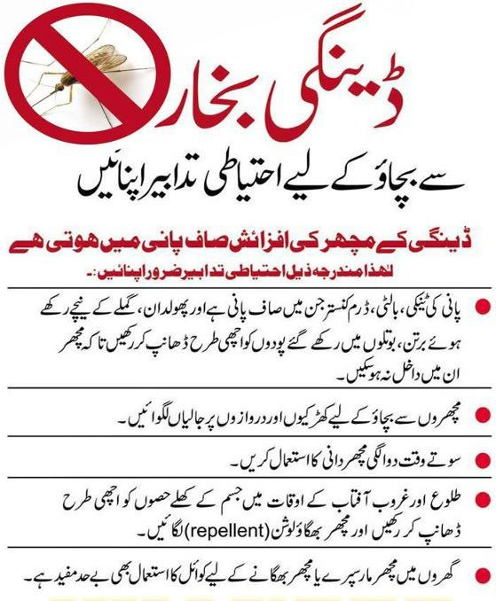 essay dengue fever pakistan urdu Dengue is a serious viral disease transmitted by the bite of the mosquito, aedes aegyptidengue occurs in two forms: dengue fever and dengue haemorrhagic feverdengue feveris a severe, flu-like illness that affects older children and adults but.