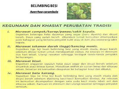 Pusat Rawatan Islam Darul Naim: Khasiat Belimbing Besi