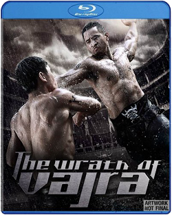 Watch The Wrath Of Vajra (2013)