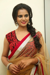 Actress Manasa Picture Gallery in Saree at Rowdy Fellow Movie Audio Launch  016.jpg