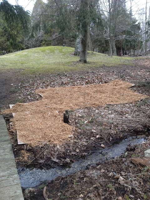 Weed cover with mulch