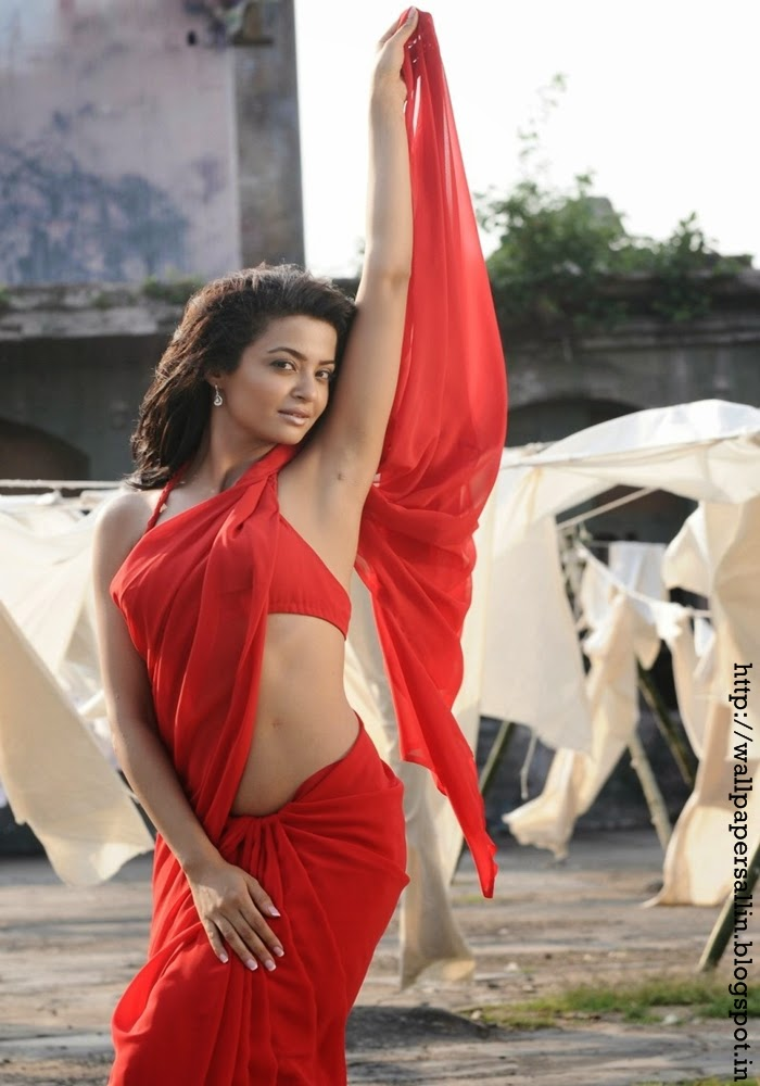 surveen chawla in red saree