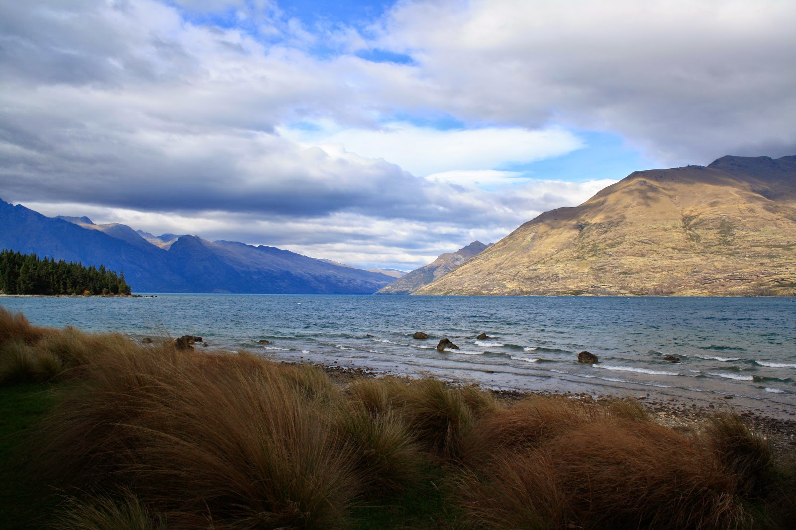 More tussock grass at Lake Wakatipu, Queenstown.