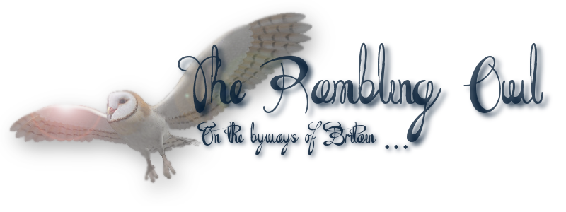 The Rambling Owl