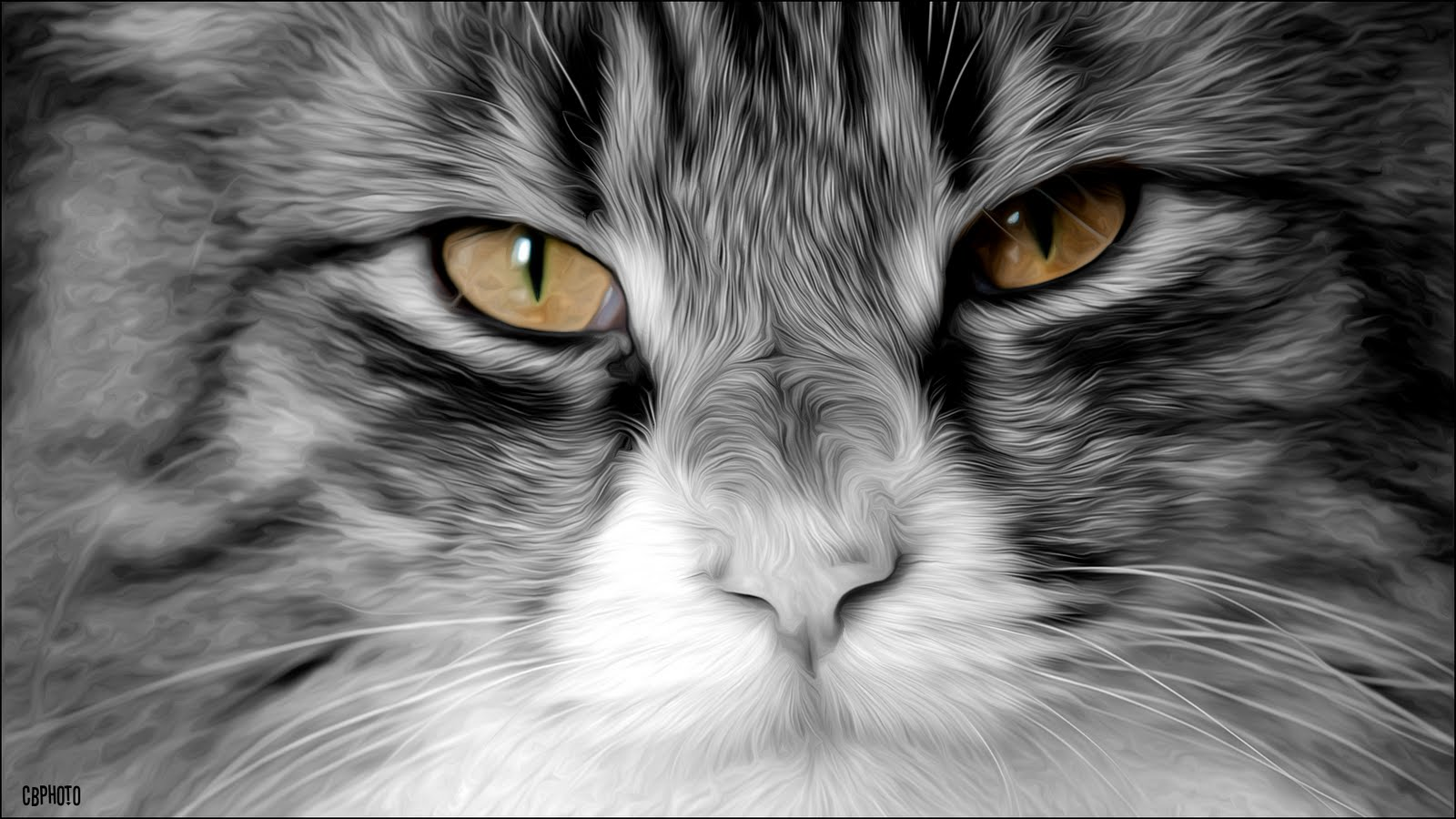 Ab photo sfondo per pc in hd for Immagini hd desktop