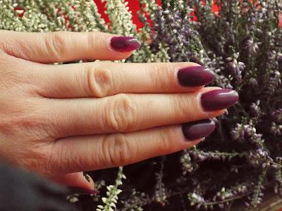 Semilac 083 Burgundy Wine