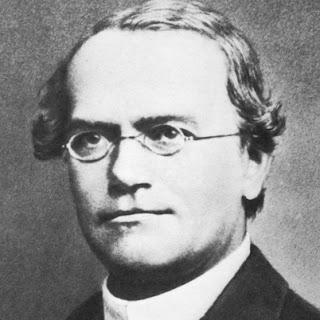 "gregor johann mendel research paper Gregor mendel, in full gregor johann mendel,  his paper "" experiments on  institute for creation research - man of science, man of god: gregor johann mendel."