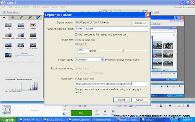 Easiest way to reduce multiple photos file size using Picasa 3