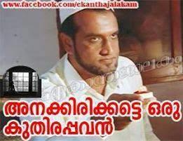 Anakk irikkatte oru kuthirapavan - Sphadikam movie Malayalam Facebok Comment
