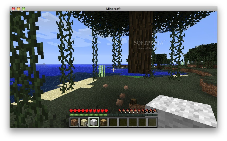 how to turn off narrator on minecraft mac