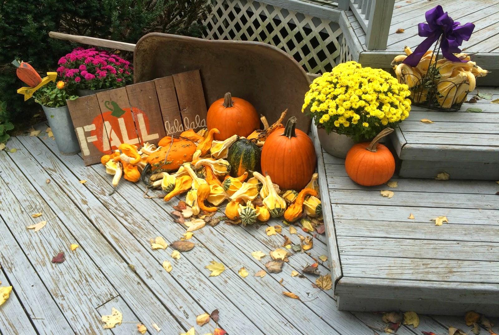 Pumpkin and Gourds in Wheelbarrel