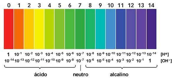 Concepto de ph expresi n matem tica escala de sorensen definiciones de cido base energ a - Colores para la concentracion ...