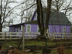 HAPPINESS IS A PURPLE HOUSE!