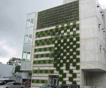 green building dissertation